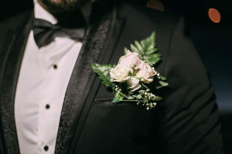 tolga yaka çiçeği