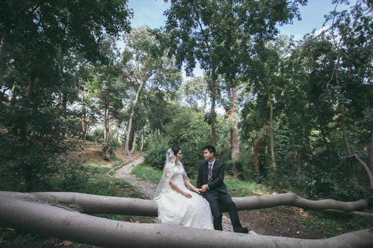 Düğün Fotoğrafı - yeşilliklerde