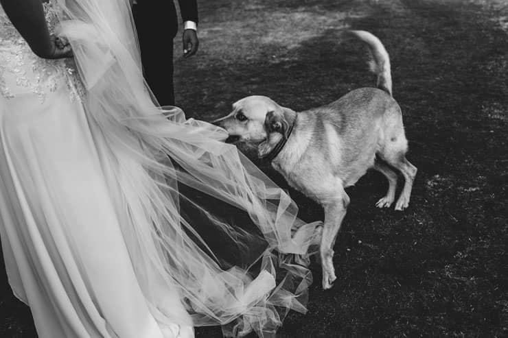 Bodrum Daphnis Hotel Wedding Reception Before Party