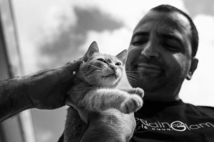 orcun yalcin kedisi